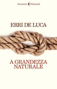 A GRANDEZZA NATURALE di DE LUCA ERRI