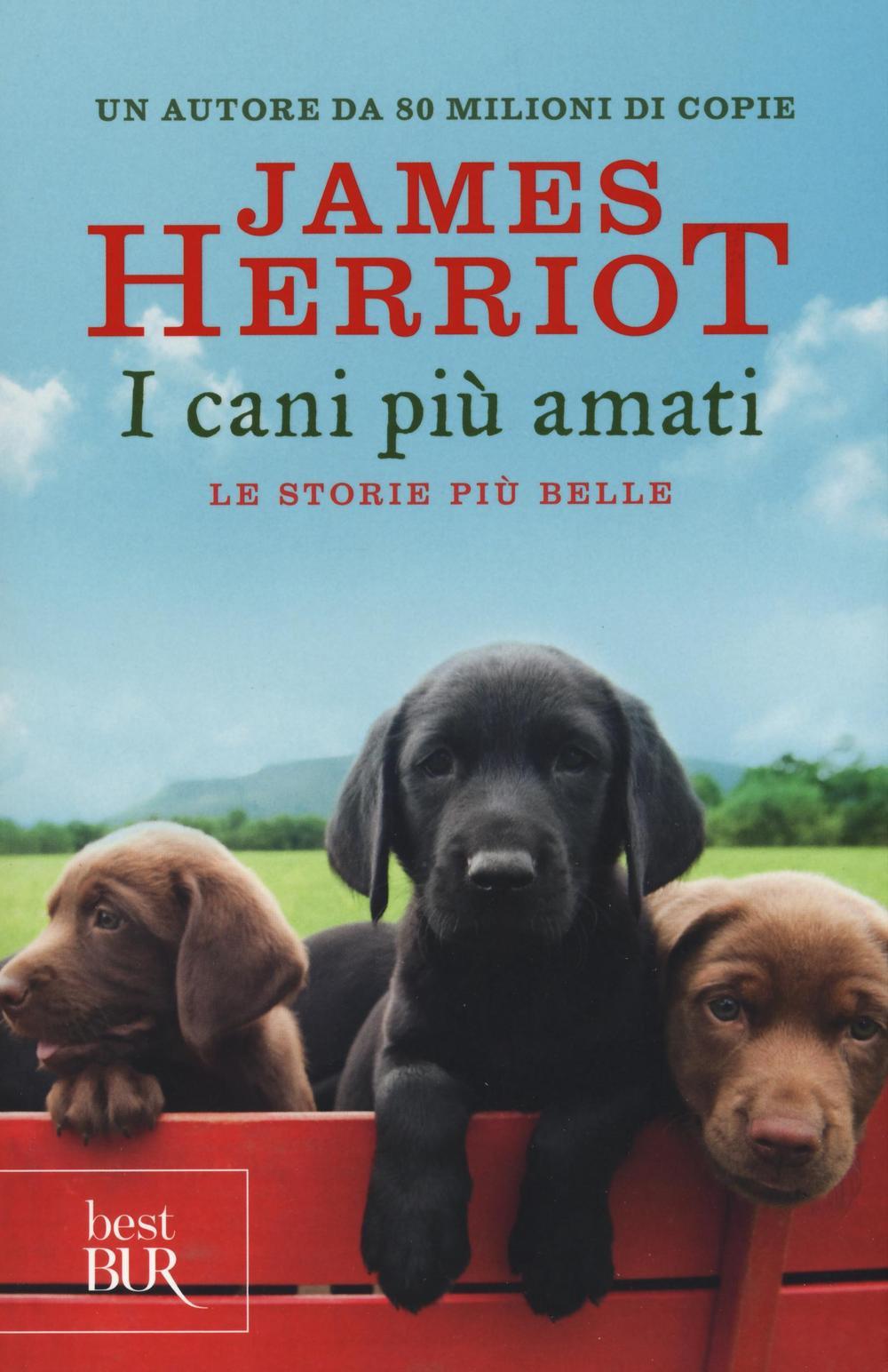 CANI PIÙ AMATI. LE STORIE PIÙ BELLE (I) - 9788817090445