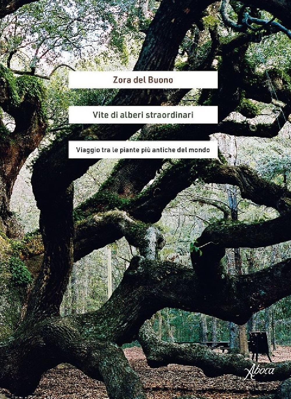 Vite di alberi straordinari. Viaggio tra le piante più antiche del mondo