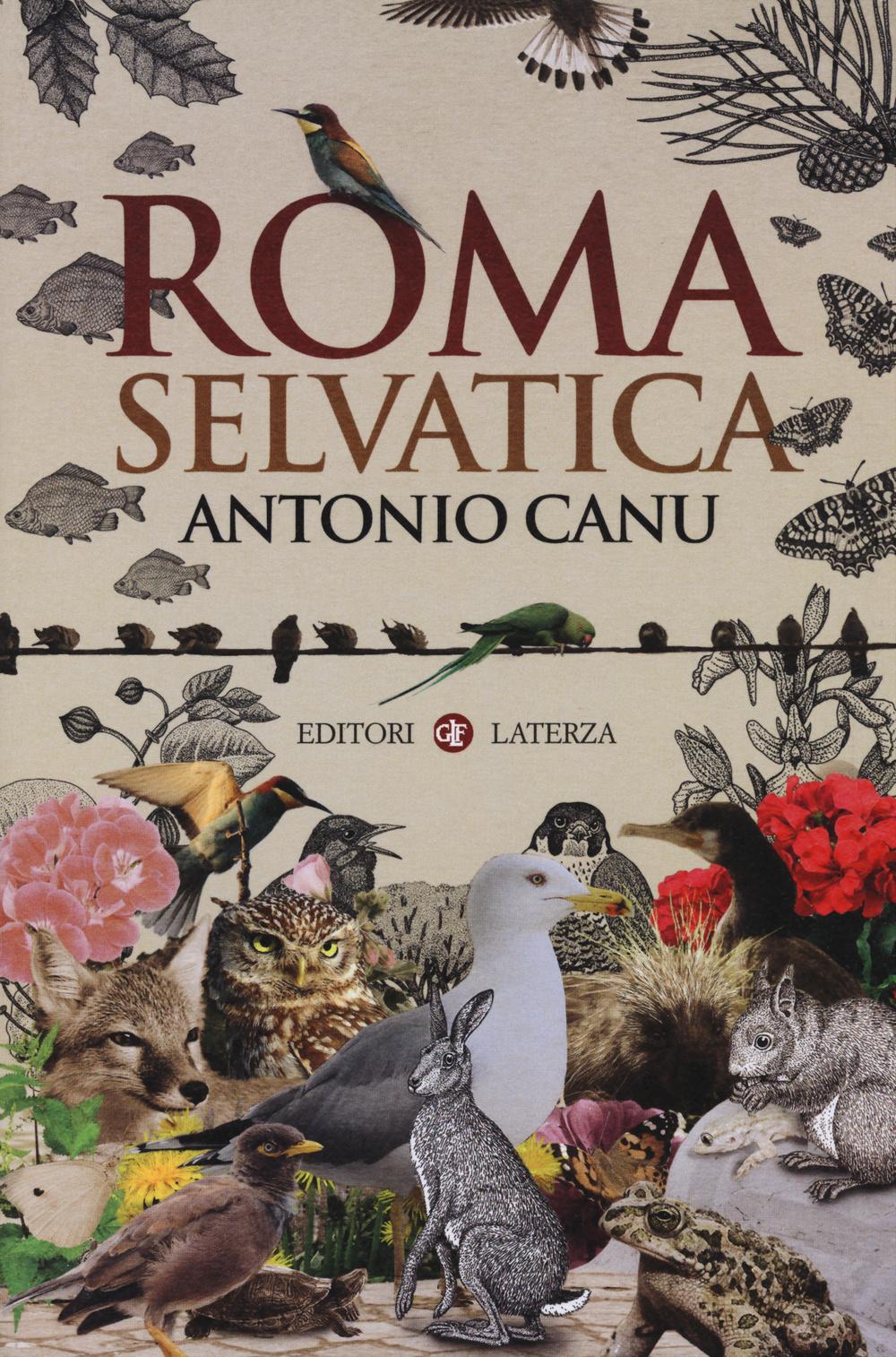 ROMA SELVATICA - 9788858119747