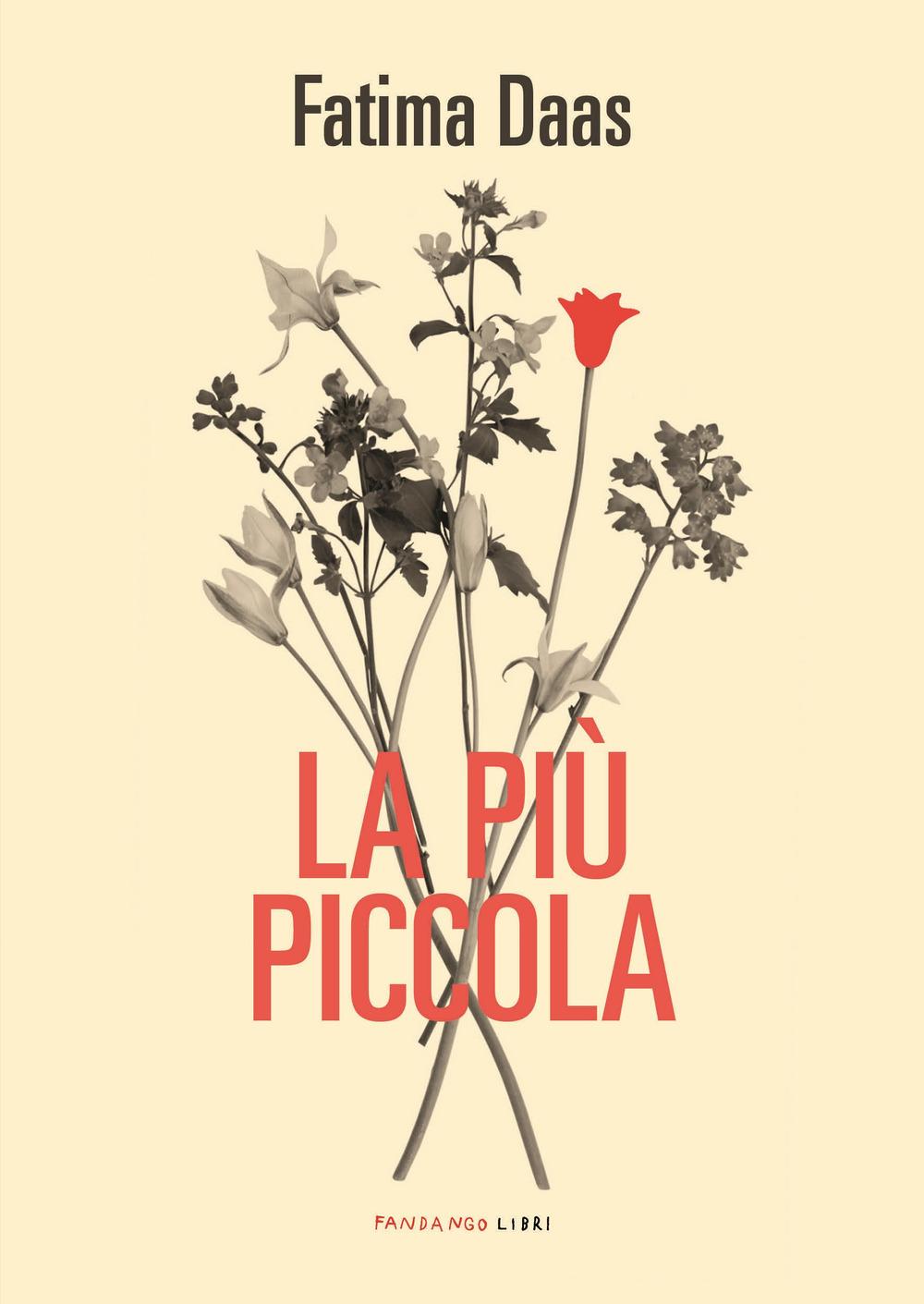 PIÙ PICCOLA (LA)