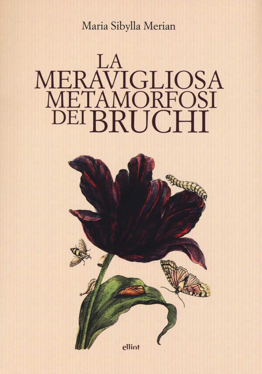 MERAVIGLIOSA METAMORFOSI DEI BRUCHI (LA) - Merian M. Sibylla; Gregorio M. (cur.) - 9788861929548