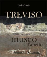 TREVISO - MUSEO ALL'APERTO di CIACCIA ENNIO
