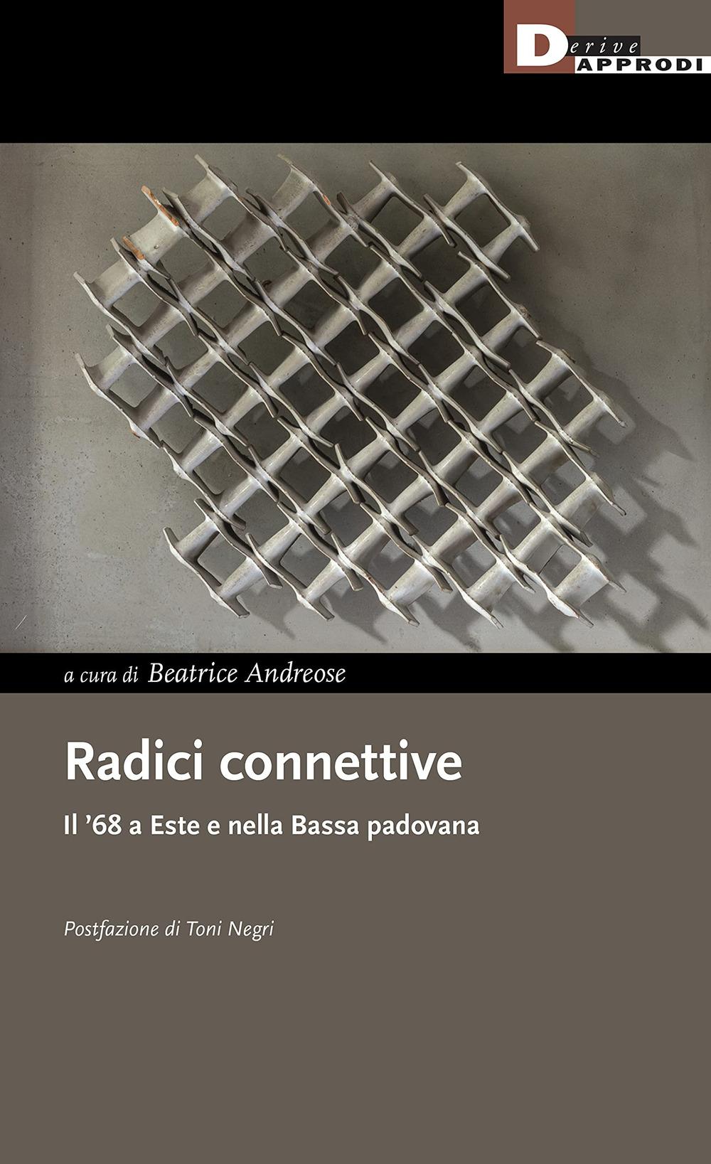 RADICI CONNETTIVE. IL '68 A ESTE E NELLA BASSA PADOVANA - Andreose B. (cur.) - 9788865484067