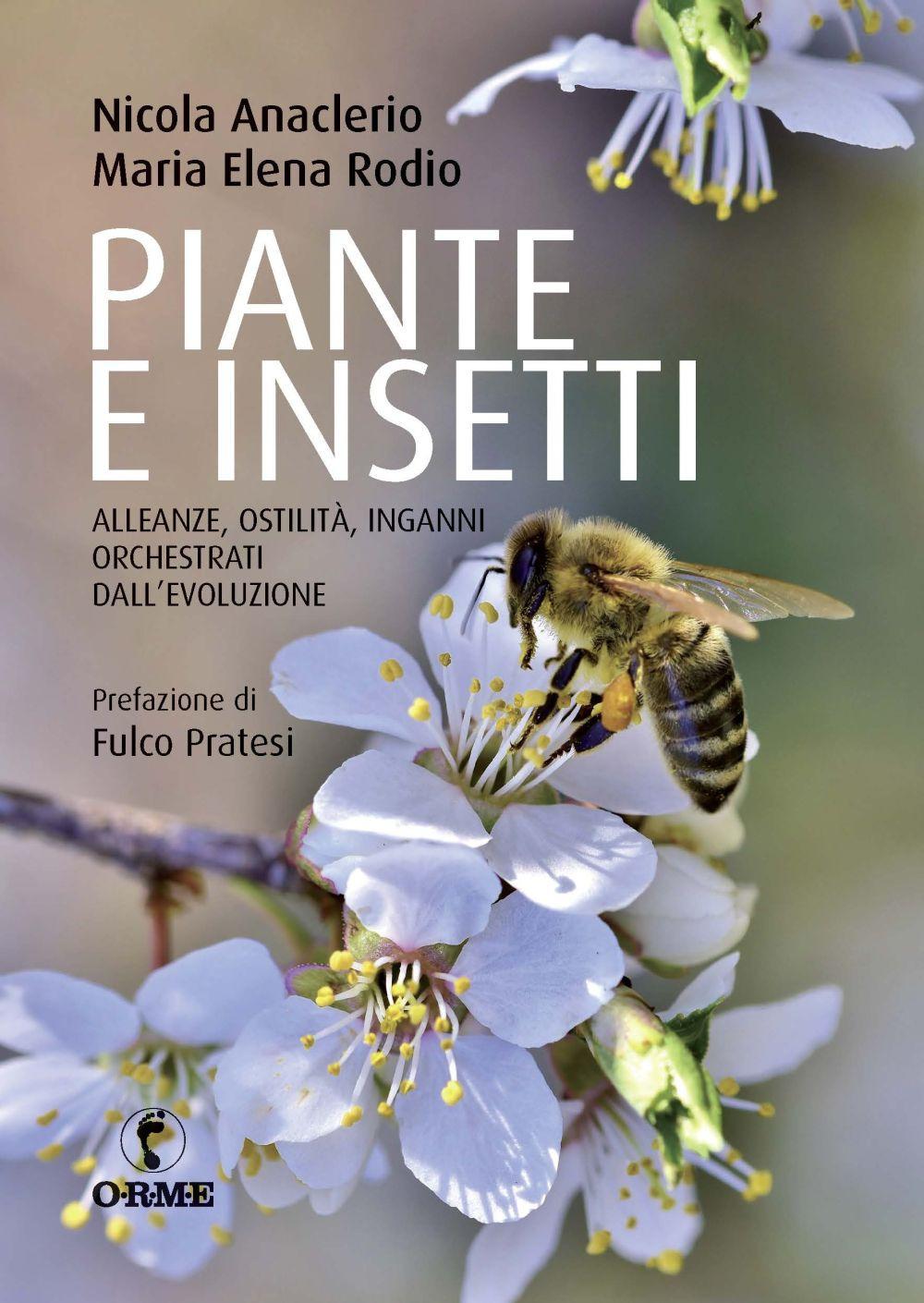 PIANTE E INSETTI - Anaclerio; Rodio - 9788867101580
