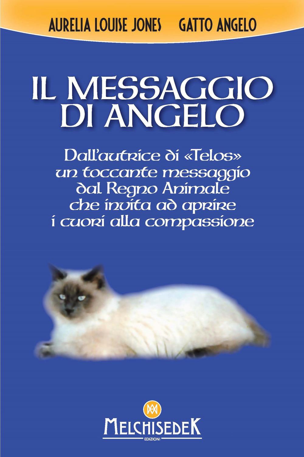 MESSAGGIO DI ANGELO (IL) - Jones Aurelia Louise - 9788893401296