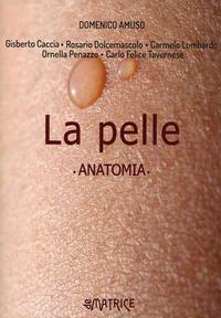 PELLE - ANATOMIA di AMUSO DOMENICO